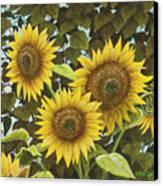 Summer Quintet Canvas Print by Marc Dmytryshyn