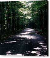 Sun And Shadow Road In Summer Imp Wc Canvas Print