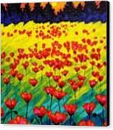 Sun Poppies Canvas Print