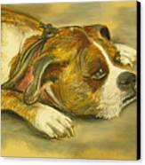 Sunday Arts Fair Dog In A Mood Canvas Print by Deborah Willard