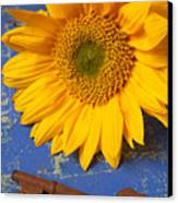 Sunflower And Skeleton Key Canvas Print by Garry Gay
