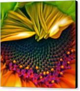 Sunflower Smoothie Canvas Print
