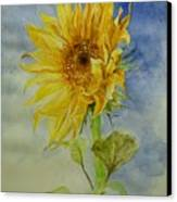 Sunflower Tribute To Van Gogh Canvas Print