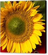 Sunflower With Old Key Canvas Print