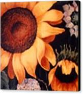 Sunflowers And More Sunflowers Canvas Print
