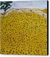 Sunflowers Field 1998. Canvas Print