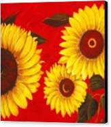 Sunflowers IIi Canvas Print