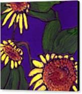 Sunflowers On Purple Canvas Print
