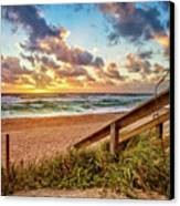 Sunlight On The Sand Canvas Print by Debra and Dave Vanderlaan