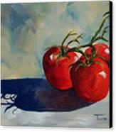 Sunlit Tomatoes  Canvas Print
