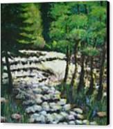 Sunlit Waterfall Canvas Print