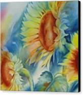 Sunny Flowers I Canvas Print