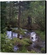 Sunny Woods Canvas Print