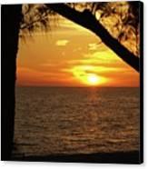Sunset 2 Canvas Print by Megan Cohen