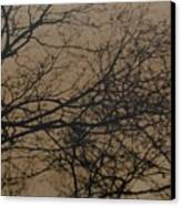 Sunset Snow Canvas Print