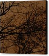 Sunset Winter Canvas Print