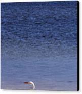 Sunshine Skyway Bridge With White Egret Canvas Print