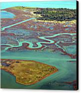 Swamp Area In Venice Canvas Print by By LTCE