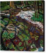 Swamp Moss Shadows Canvas Print