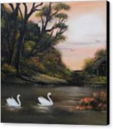 Swans At Dusk.for Sale Canvas Print