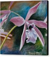 Sweet Orchid Canvas Print