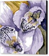 Sweet Orchids Canvas Print