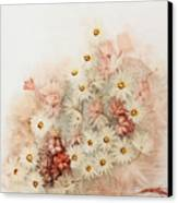Sweetness Canvas Print by Fatima Stamato
