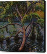 Swimming Tree Canvas Print by Art Nomad Sandra  Hansen