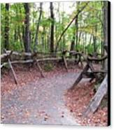 Switchback Walkway Canvas Print by Suzanne  McClain