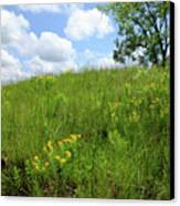 Tall Grass Hillside Canvas Print by Scott Kingery