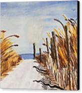 Tall Grass With Drift Fence Canvas Print