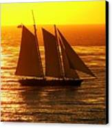 Tangerine Sails Canvas Print