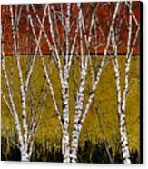 Tante Betulle Canvas Print by Guido Borelli