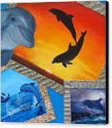Taylors Dolphins Canvas Print