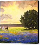 Texas Horses And Bluebonnets Canvas Print by Connie Tom