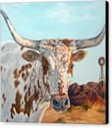 Texas Longhorn Canvas Print by Jana Goode