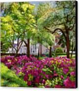 The Azaleas Of Savannah Canvas Print