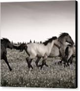 The Chase 1 Copper Canvas Print