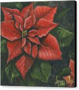 The Christmas Flower Canvas Print by Jeff Brimley