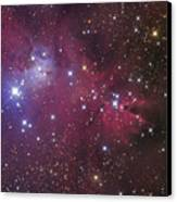 The Cone Nebula Canvas Print