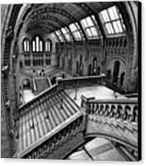 The Escher View Canvas Print by Martin Williams