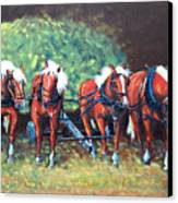 The Fabulous Four Canvas Print by Jean Ann Curry Hess