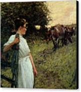 The Farmer's Daughter Canvas Print