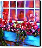 The Flowerbox Canvas Print