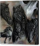 The Friesians In My Head Canvas Print by Caroline Collinson