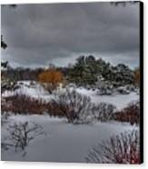 The Garden In Winter Canvas Print by David Bearden