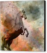 The Golden Horse Canvas Print by Issabild -
