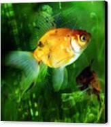 The Goldfish Canvas Print