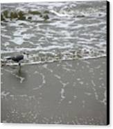 The Gulf In Shades Of Gray - On The Edge Canvas Print