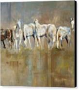 The Horizon Line Canvas Print by Frances Marino